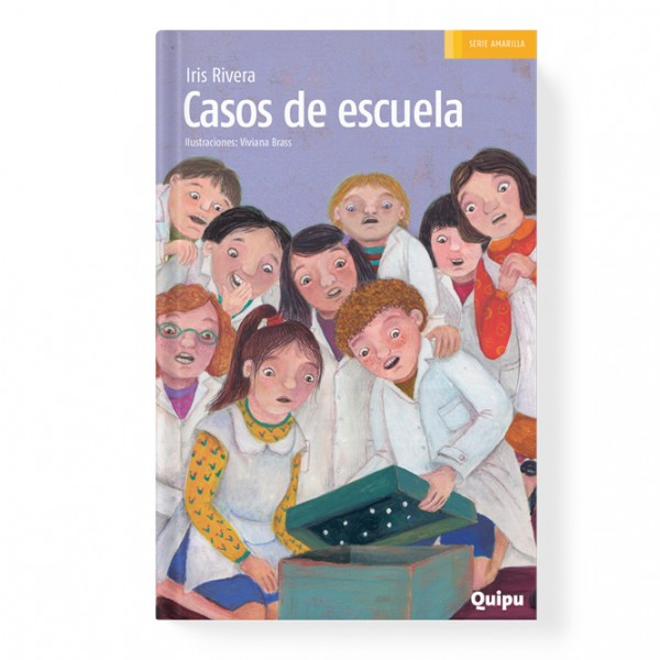 School cases